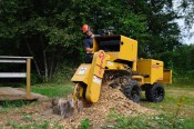 45hp Stump Grinder £300.00